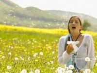 Баҳорги аллергиядан халос бўлишнинг 7 усули
